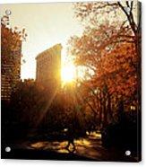 Flatiron Building Sunset - Madison Square Park Acrylic Print