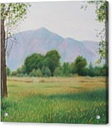 Flatirons From Dry Creek Meadow Acrylic Print
