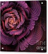 Fleur Pourpre Acrylic Print by John Edwards