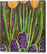 Fleurs D' Tulips And Hyacinths Acrylic Print