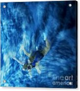 Flight For Two 2 Acrylic Print