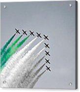 Flight Formation Acrylic Print