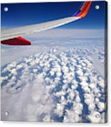 Flight Home Acrylic Print