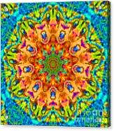 Flight Mandala Acrylic Print