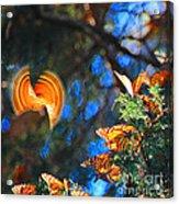 Flight Of A Monarch Acrylic Print