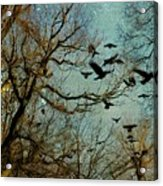 Flight Of The Forest Crows Acrylic Print