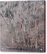 Flint River 2 Acrylic Print