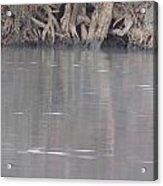 Flint River 6 Acrylic Print
