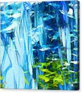 Float 3 Acrylic Print