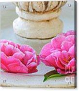Floating Camellias Acrylic Print