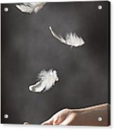 Floating Feathers Acrylic Print by Amanda Elwell