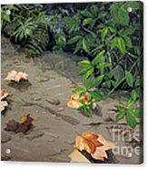 Floating Leaves By George Wood Acrylic Print