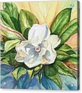 Floating Magnolia Acrylic Print