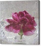 Floating Mini Acrylic Print