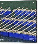Floatting Nets Acrylic Print by Sami Sarkis
