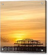 Flock Of Starlings Over The West Pier In Brighton Acrylic Print