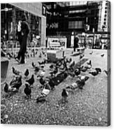 flocks of pigeons on the street outside Vancouver city centre station on granville street BC Canada Acrylic Print by Joe Fox
