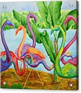 Floosie Flamingos Acrylic Print