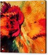 Floral Art Xxi Acrylic Print