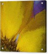 Floral Art Xxxii Acrylic Print