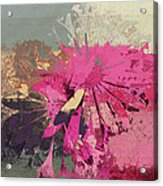 Floral Fiesta - S33bt01 Acrylic Print