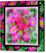 Floral Framework Acrylic Print
