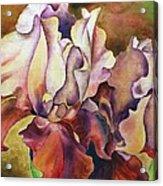 Floral I Acrylic Print