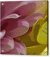 Floral Impressions Acrylic Print