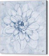 Floral Layers Cyanotype Acrylic Print