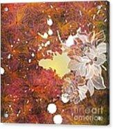 Floral Print Acrylic Print by Ankeeta Bansal