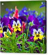 Floral Salad Acrylic Print