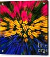 Floral Triple Zoom Acrylic Print