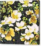 Floral Yellow Acrylic Print
