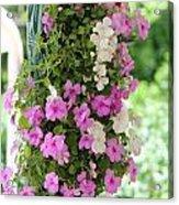 Floral3 Acrylic Print