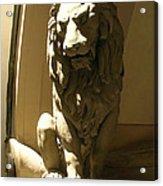 Florence Lion Acrylic Print
