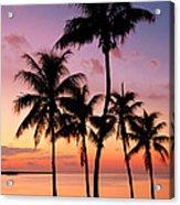 Florida Breeze Acrylic Print