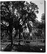 Florida Country Shade Acrylic Print