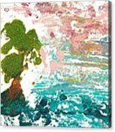 Florida Cypress Acrylic Print