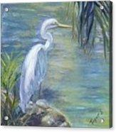 Florida Keys Egret Acrylic Print