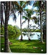 Florida Lake Acrylic Print