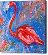 Florida Pink Flamingo - Modern Impressionist Art Acrylic Print