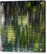 Florida Silver Springs River Acrylic Print by Christine Till