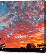 Florida Spring Sunset Acrylic Print
