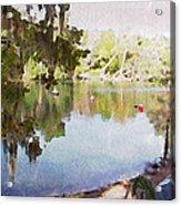 Florida Springs Waiting Acrylic Print