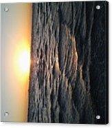 Florida Sunrise Acrylic Print by Chasity Johnson