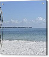 Florida Sunshine Acrylic Print