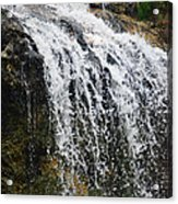Florida Waterfall Acrylic Print