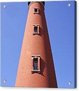 Florida's Tallest Acrylic Print