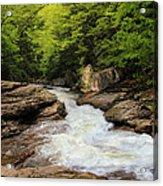 Flow Of Forest Zen Acrylic Print