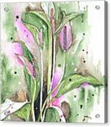 Flower Anthurium 03 Elena Yakubovich Acrylic Print by Elena Yakubovich
